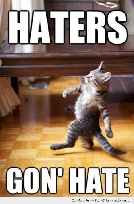 funny-haters-gonna-hate-cat-pics