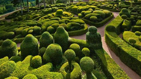 amazing-boxwood-gardens_02