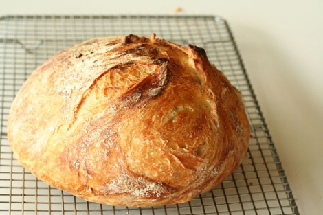 no-knead-bread15