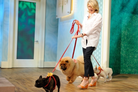 unleashed-martha-stewart-dogs